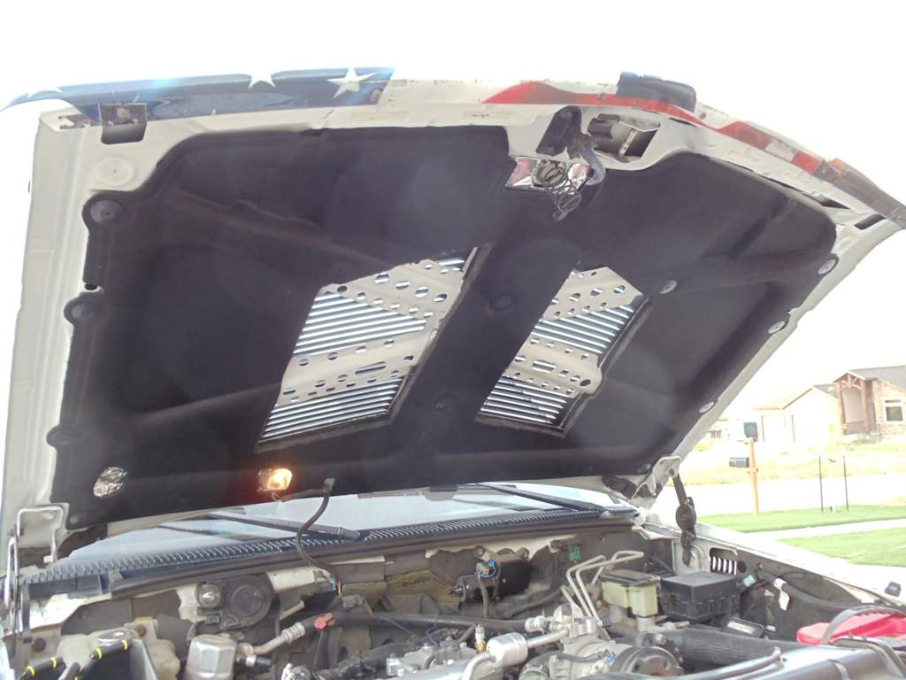 Hood Louvers For Cooling-dsc00763.jpg