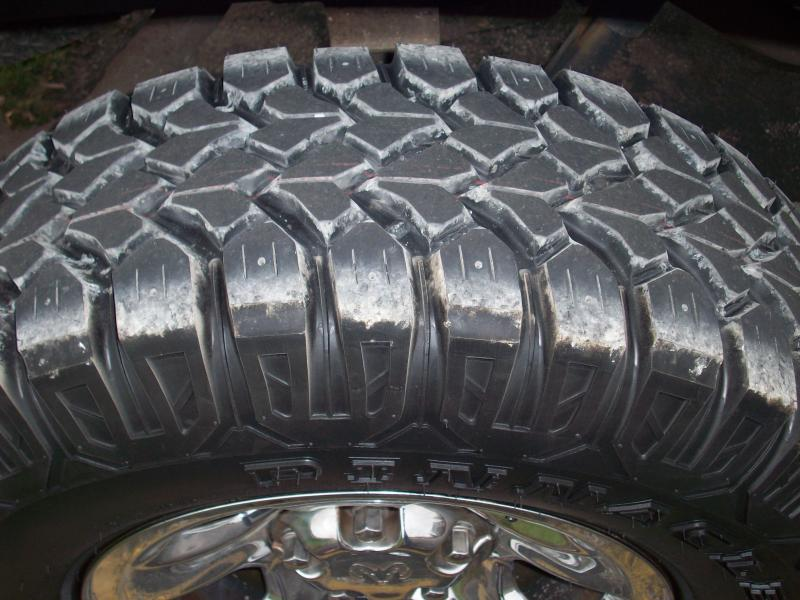 Pinnacle MT Grizzly Grip tires-griztire1.jpg